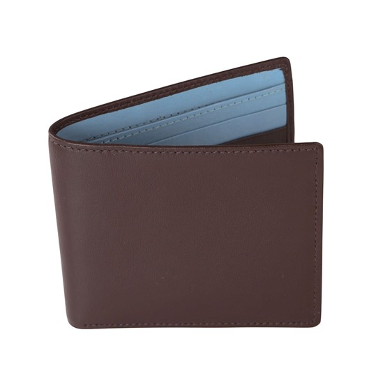 Brown and Pale Blue Leather Wallet