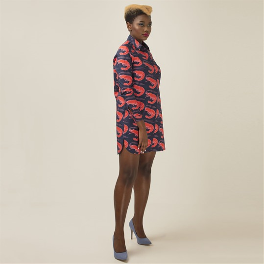 Womens Shrimps Shirt Dress
