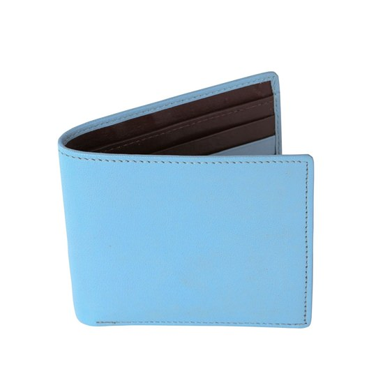 Pale Blue and Brown Leather Wallet