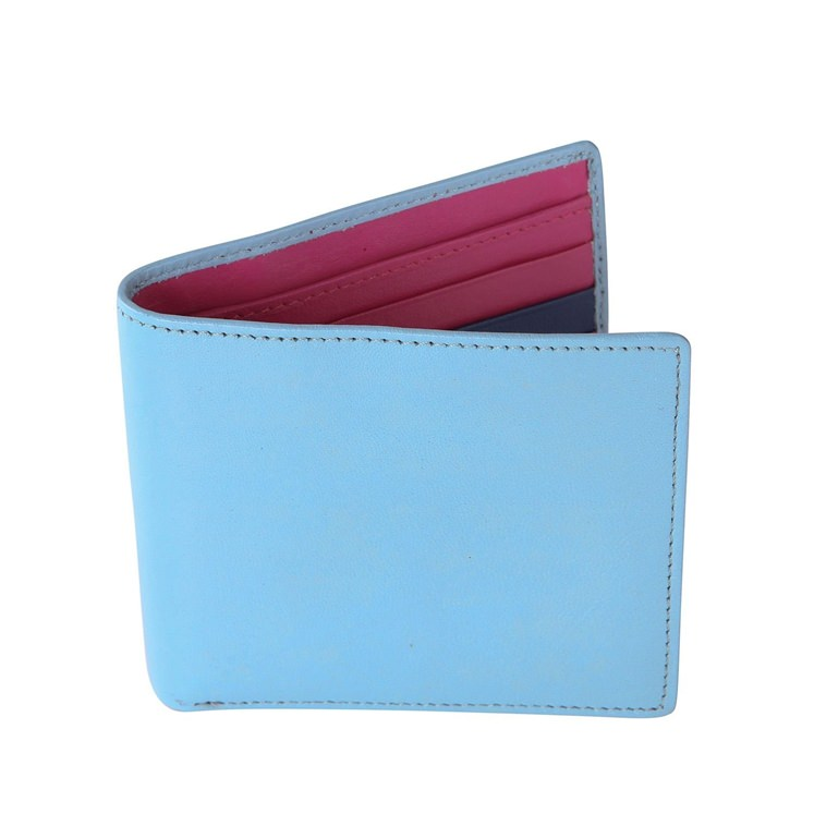 Pale Blue and Hot Pink Leather Wallet
